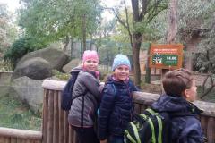 zoo_04